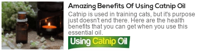 what is catnip essential oil used for